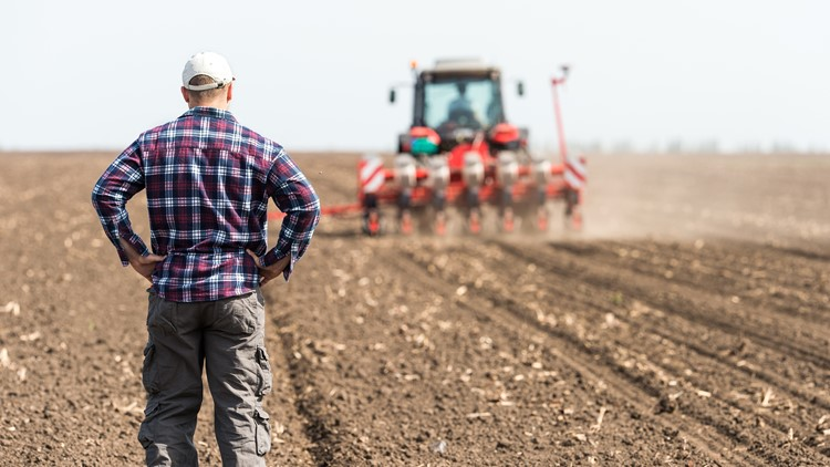 IRS Direct Pay Could Help Farmers, Fishermen Meet March 1 Tax Deadline